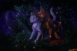 In the night by gasuaska