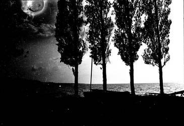 full moon by misamunk