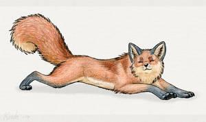 Foxy by Kuuda