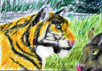 Timur and Amur by KAY-painting