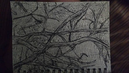 Sake Tree Sketch by LeoReeseo