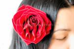 Flamenco Dream by blacksunway
