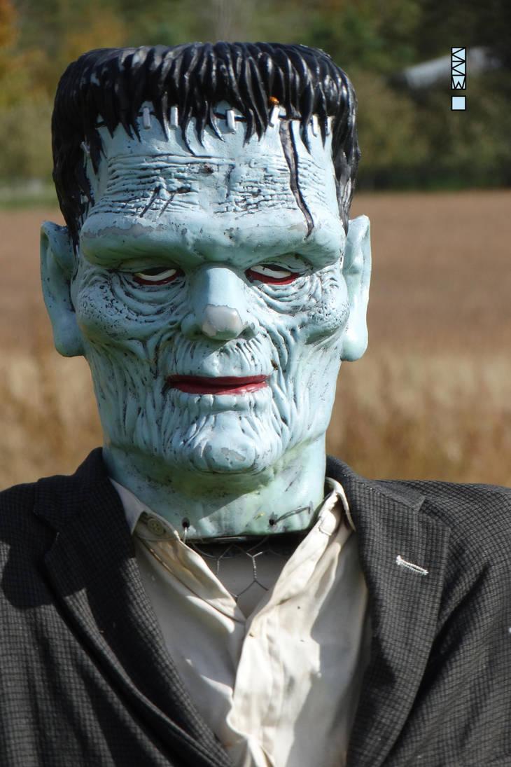 Frankenstein Sighting around Haunted Hollow, Weyau by Crigger