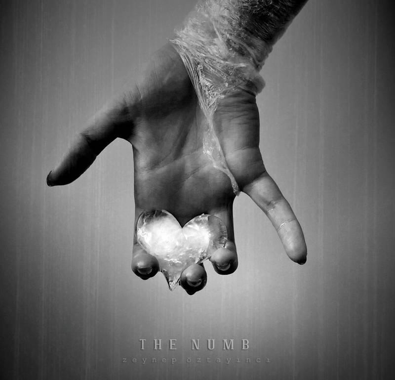 The Numb by estellamestella