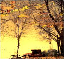 yellow autumn by estellamestella