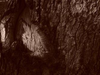 Wooden Cavern by kisslostinink