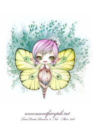 Fee Papillon by Nailyce