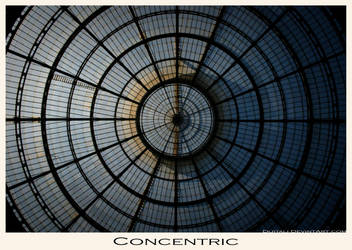 Concentric by dijitali