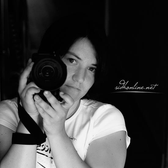 sidh09's Profile Picture