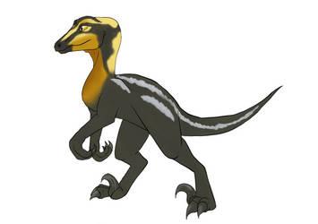 Raptor adopt closed by Szirka