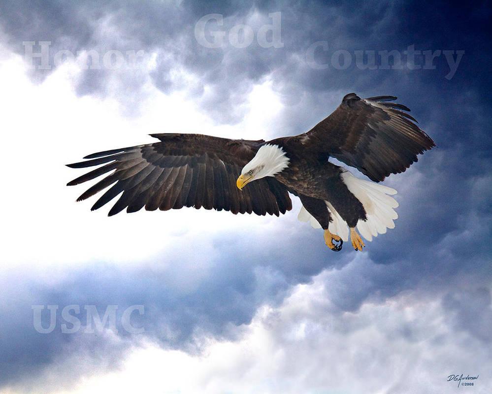 Eagle USMC by DGAnder