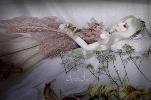 Sleeping Beauty by AyuAna