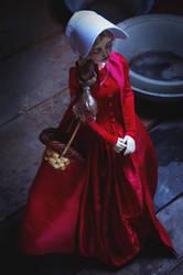 Handmaid's Dress by AyuAna