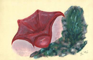 Flower 1996 by tarmedy