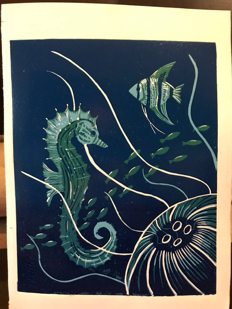 Seahorse by duchowa