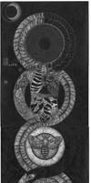 Ouroboros of Life and Death by labornthyn