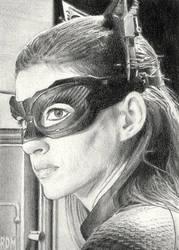 Catwoman by rajafdama
