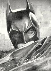 Batman by rajafdama