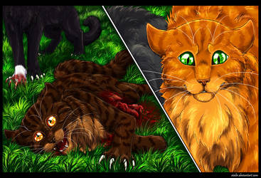 Tigerstar's Death by Vialir