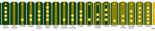 Rank Insignia of the Imperial Neo-Japanese Empire by tylero79
