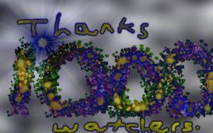 Thankyou watchers. 1,000 views by caninesrock