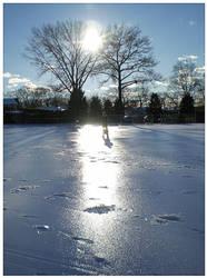 Snowy Shadow by PhotographChik