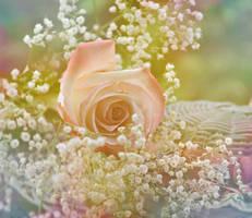 Boardwalk Roses by suezn