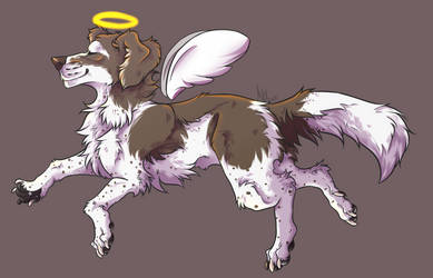 Angelic boy by letta-wolf