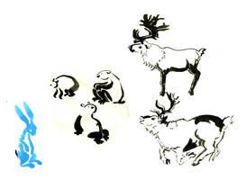 silly animals by Nasstia