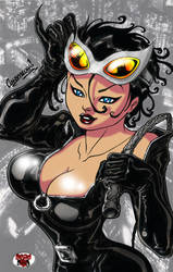ASSESINA's SELINA's CLEAVAGE by DeadDog2007