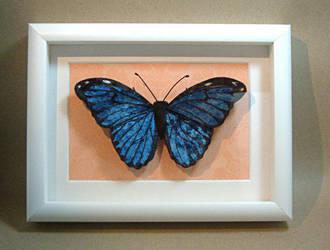 Morpho menelaus (Blue Morpho) by Lluhnij