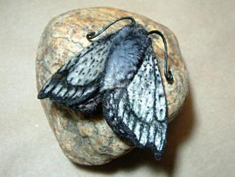 Silver moth (faux!) by Lluhnij