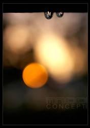 Goodnight Sun by mnoo