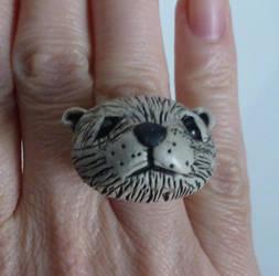 Polar Bear Ring by SMitchTheOtherSide