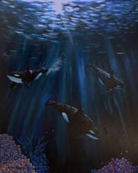 Orcas by CindysFineArtStudio
