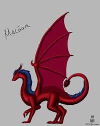 Dragon by Irolan
