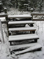 Winter Stock 2007 08 by SimplyBackgrounds