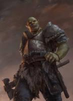 Warrior by dusint