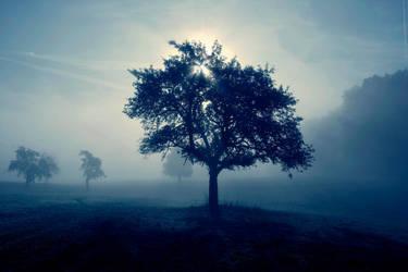 fog by Memo-ries