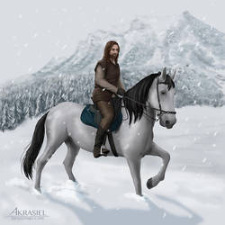 The Horseman by akrasiel