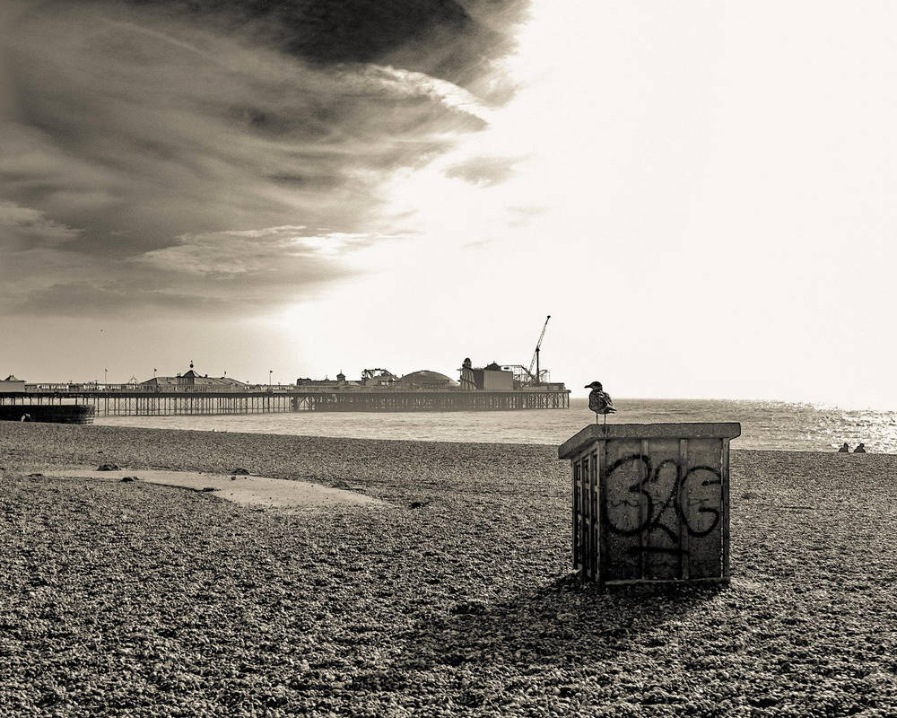 Brighton... by iangrahamimages