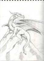 Dragon Sketch by tadamson