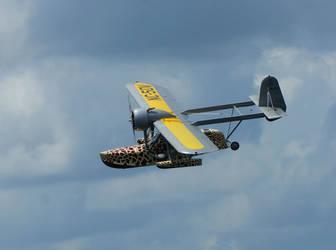 Sikorsky Flying Boat at Sun n' Fun Splash In 2013 by matt30fl