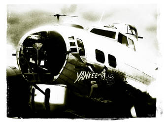 The B-17G 'Yankee Lady' 2 by x-seraphin