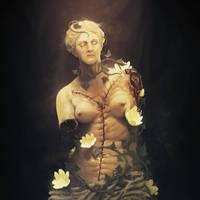 Venus Autopsy by dante-cg