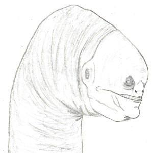 MeatoArt's Profile Picture