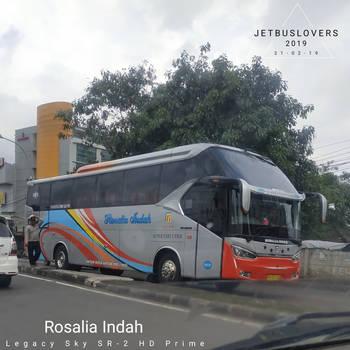 Javanese Runner: Silver Prime 547 by JETBUSLOVERS