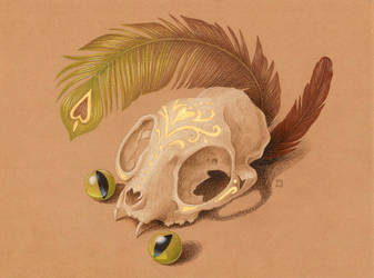 Cat Skull by grelin-machin