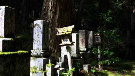 Japan - Old Cemetery by TheLoversTravelers