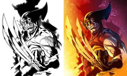 Wolverine, Color practice by Lincelots